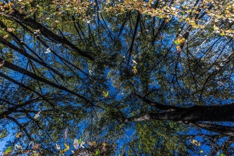 deeply, soul - photography - netagra | ello