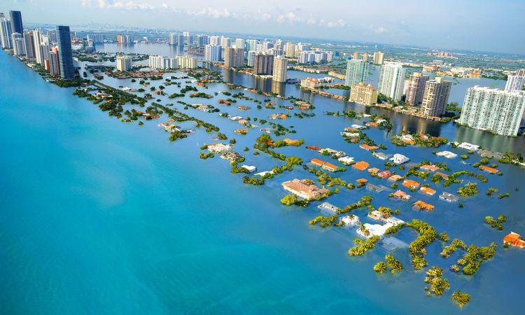 Climate Catastrophe - climate, catastrophe - valosalo | ello