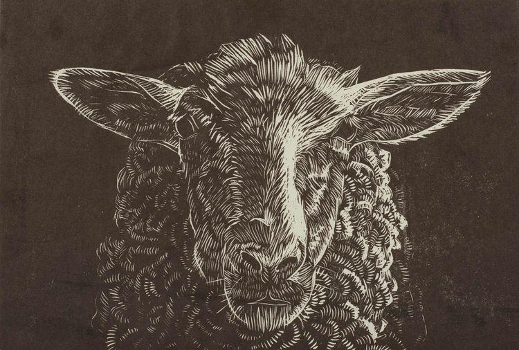 sheep, linocut, 2013 - aleksandrawiechowska | ello