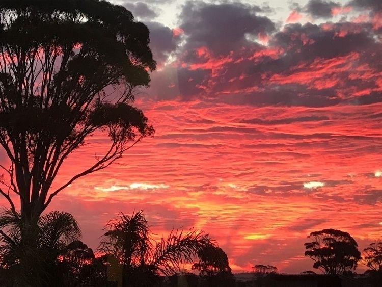 Sunsets - moomew | ello