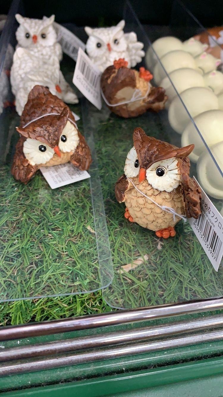 2018 - Owl, Decoration - raymondsw | ello