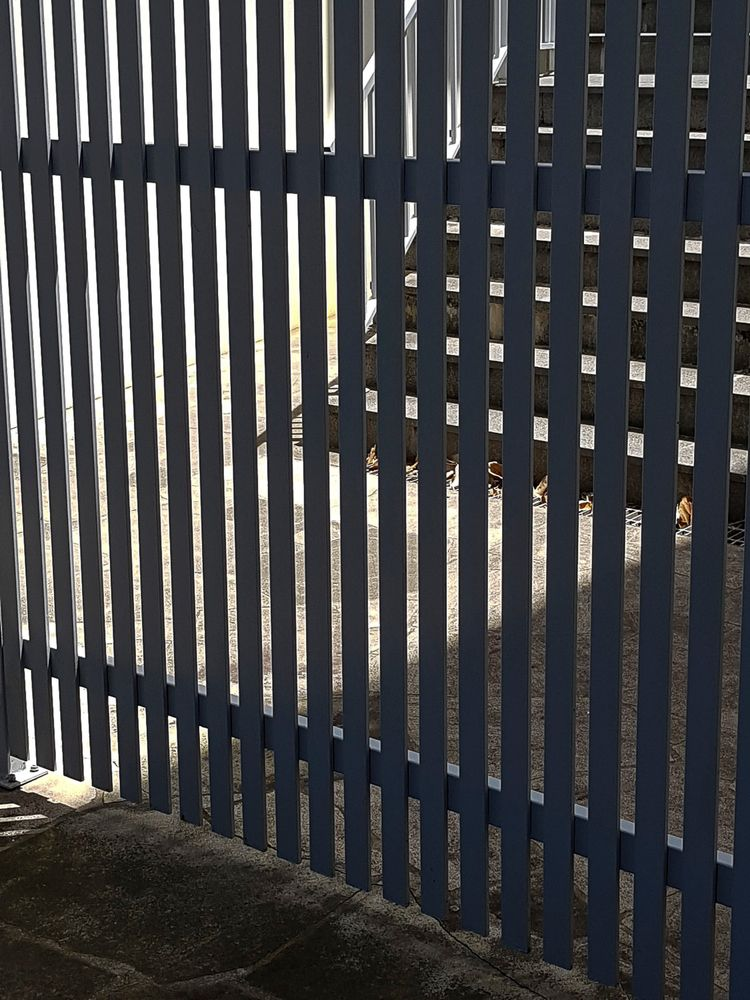 Cemetery Gates - architecture, street - donurbanphotography | ello