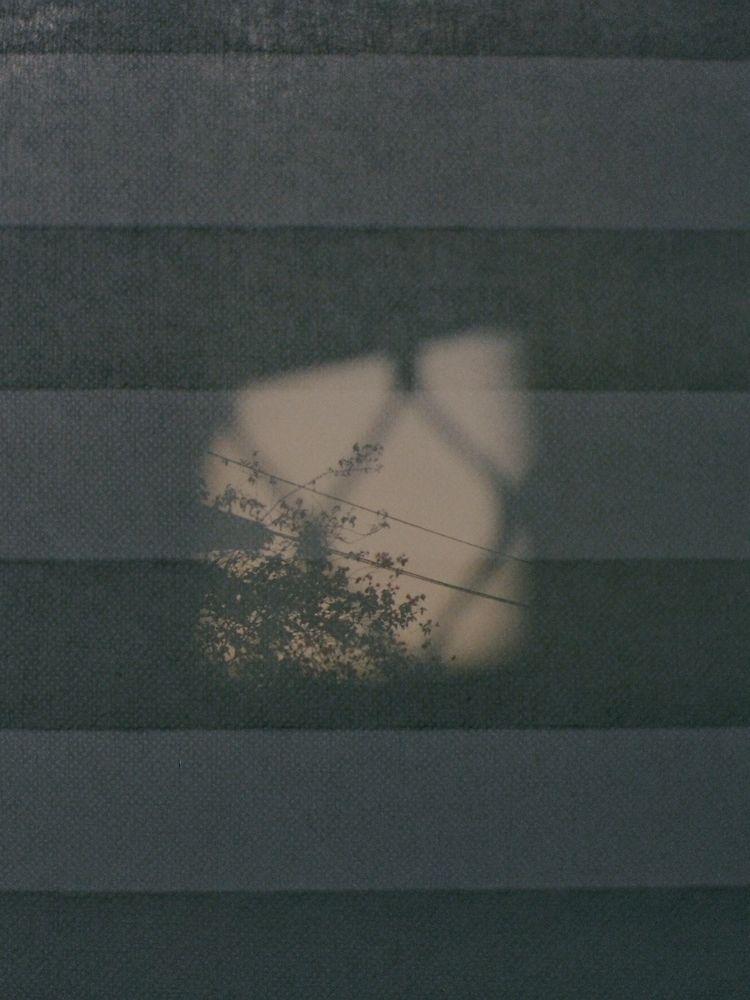 ppyzc, photography - ppyzc | ello