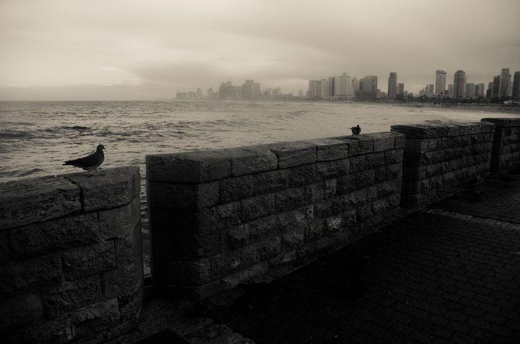 urban, landscape, storm - ydoron1 | ello