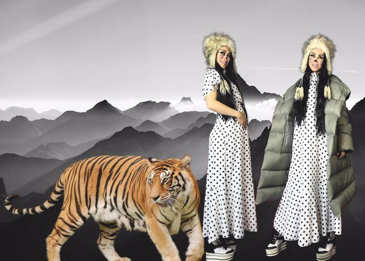 tiger salutes - nunich | ello