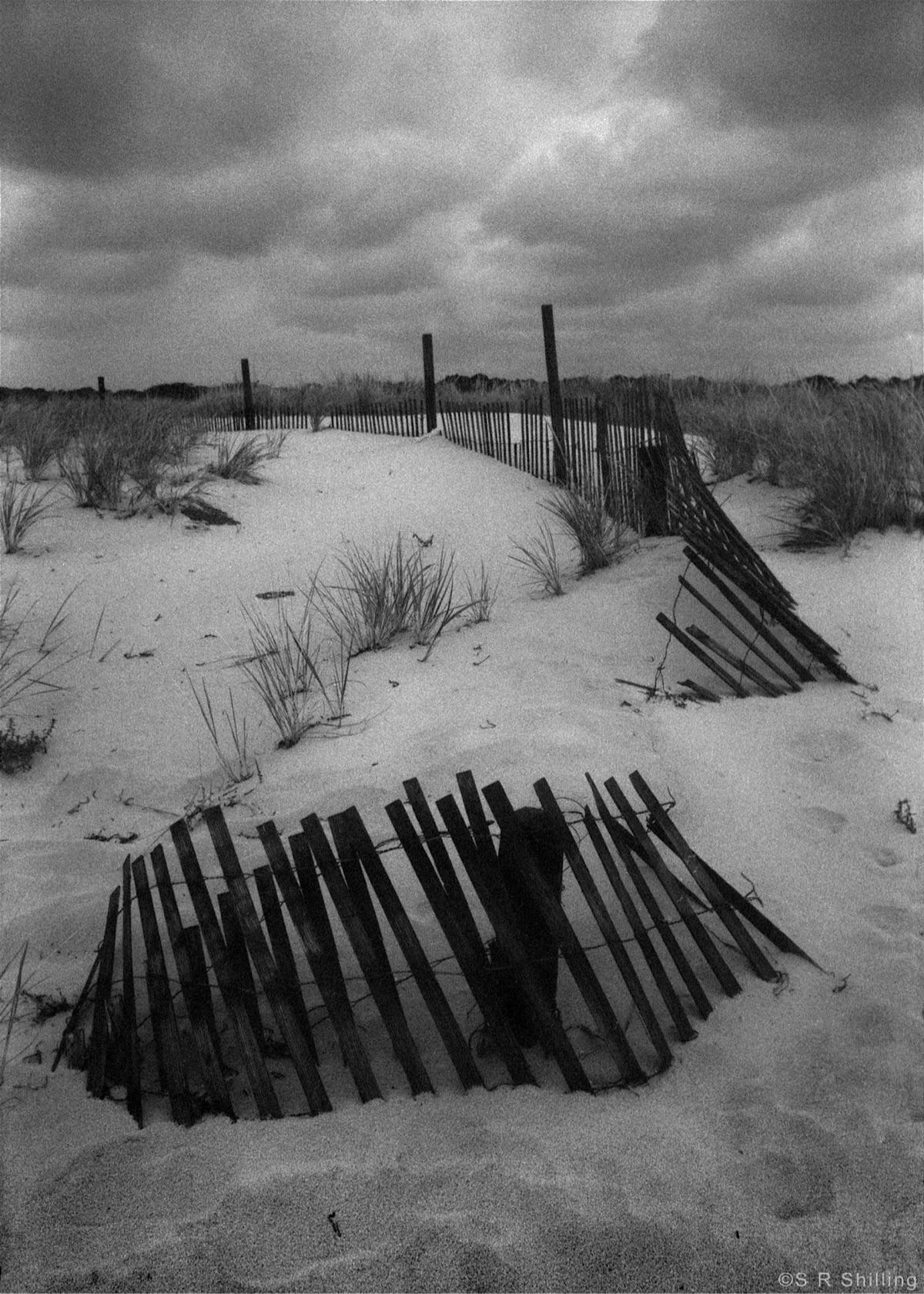 Island Beach State Park, NJ - 2 - sr-shilling | ello