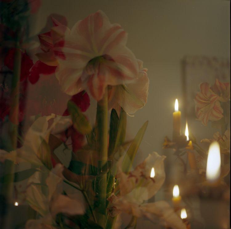 selfportrait, onfilm, flowers - teetonka | ello