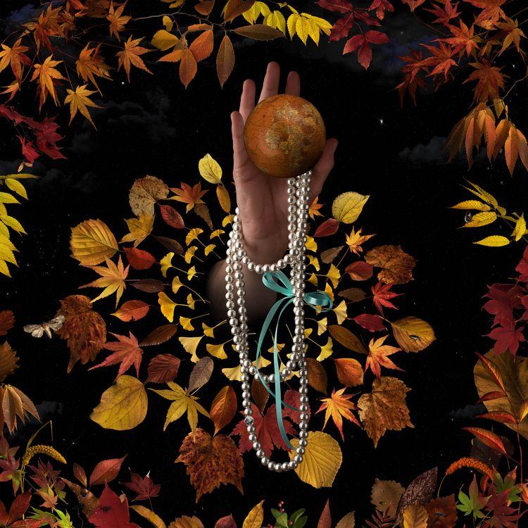 vanitas, composite, fall, leaves - bespokephoto | ello