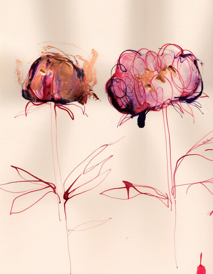 Peonies Blooming process inks v - michellepam | ello