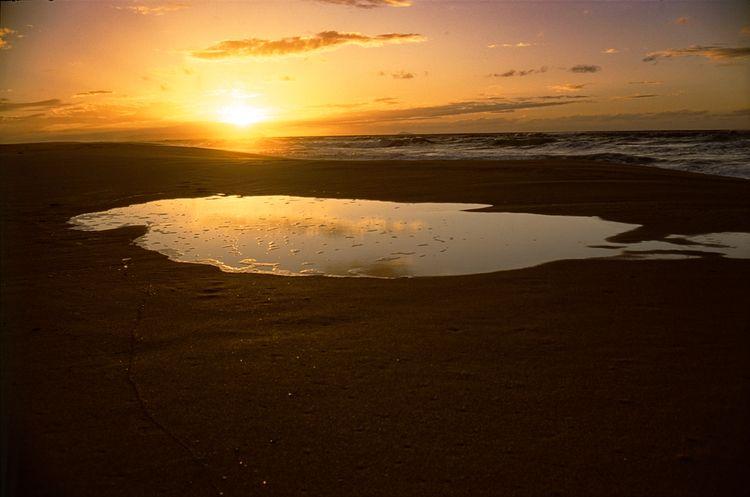Polihale, Hawaii. Agfa Precisa  - the69thdimension   ello
