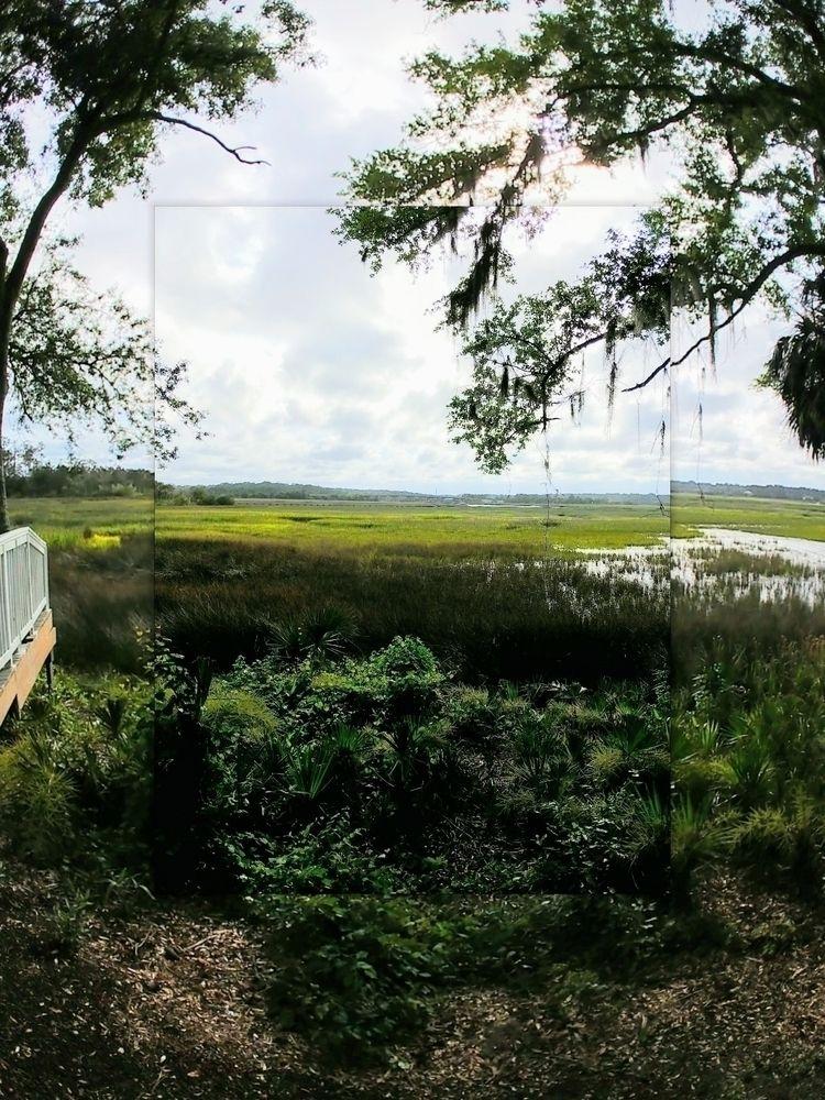 Marshfront Savannah, Georgia - marsh - anistie | ello
