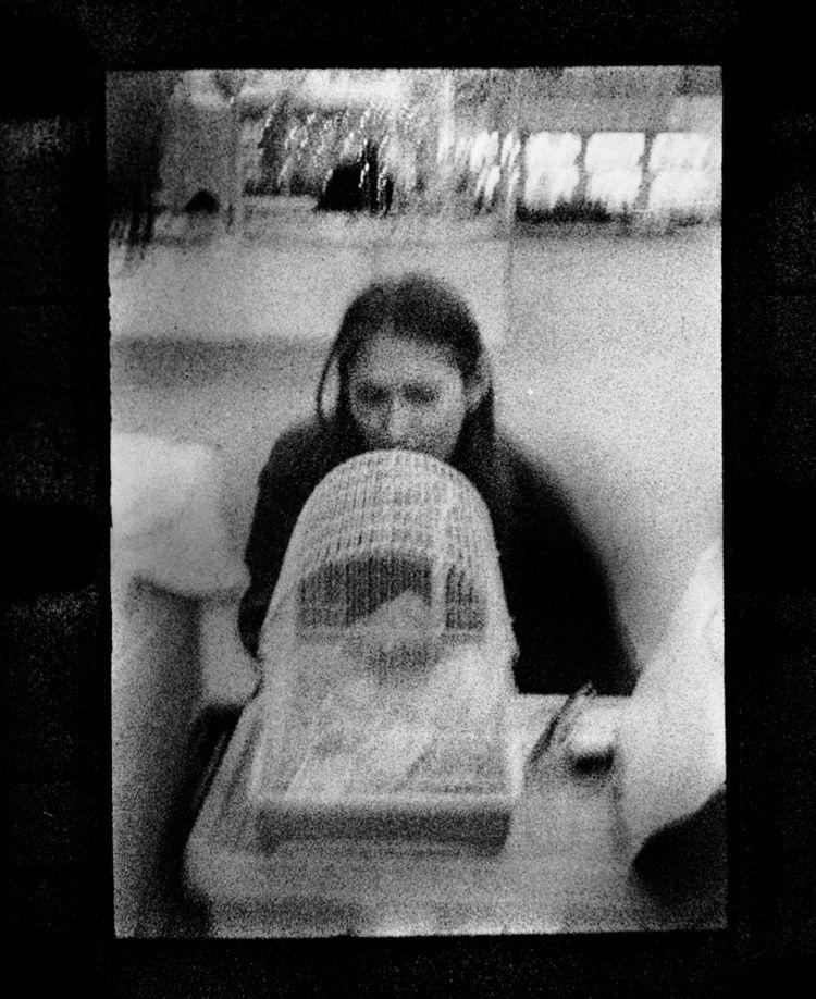 Hamster adoption. Expired foggy - stikka | ello