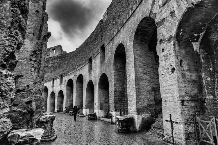 Colosseum :copyright:Agê Barros - agebarros | ello
