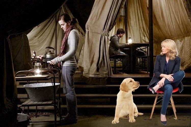 Extra ways Hermione Harry fit,  - ccruzme   ello