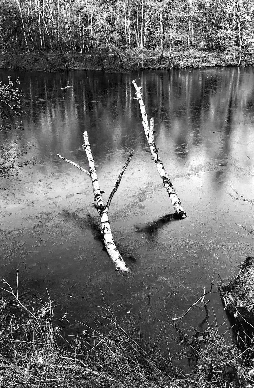 • :snowflake:️ Frozen lake - photography - borisholtz | ello