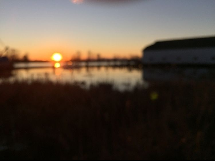 Blurry - blurry, sunset, ellophotography - spiketwopointo | ello