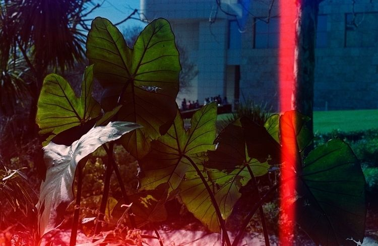 Psychedelic Blues // Nikon F100 - laurapardo | ello