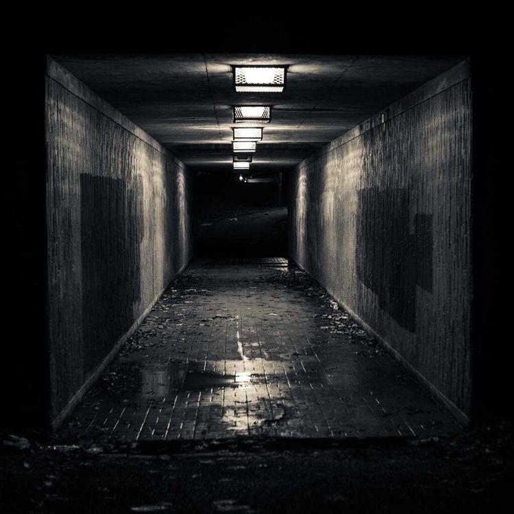 Spoopy nights... Halloween 🖤 - photography - myks_creative | ello