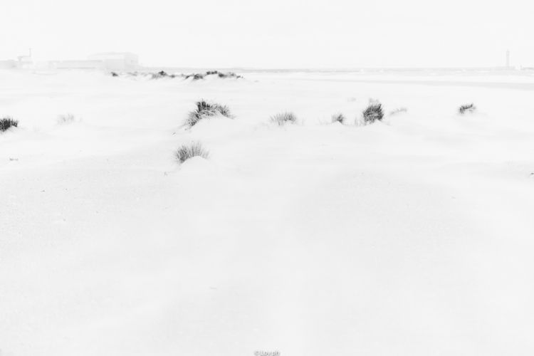 white, blackwhite, BNW, beach - loyph | ello