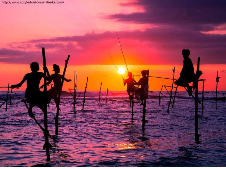 Traditional stilt fisherman, Sr - cotyledontours | ello