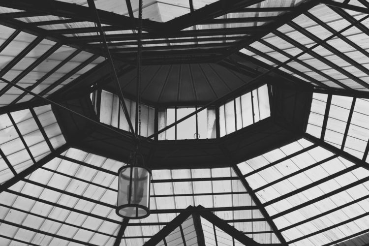 Glass Roof, Athens (2017 - janekpaul | ello