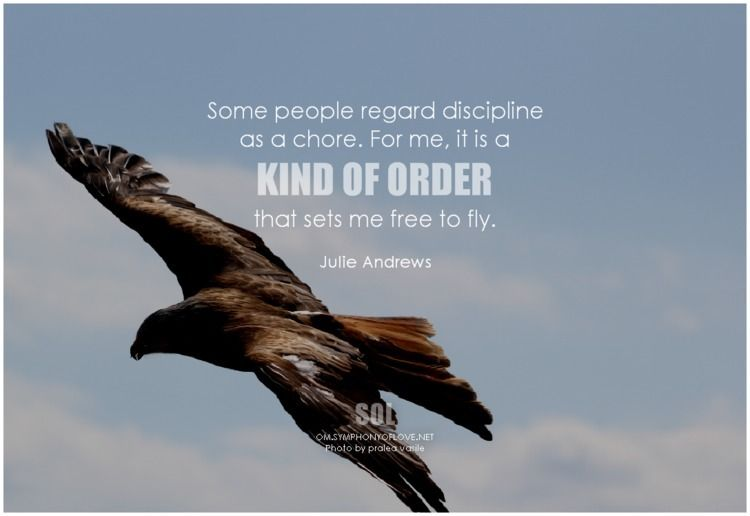 people regard discipline chore - symphonyoflove | ello