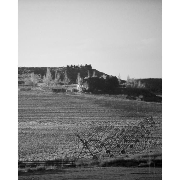 Crop // Spain ⠀⠀⠀⠀⠀⠀⠀⠀⠀ Process - livetheshot | ello