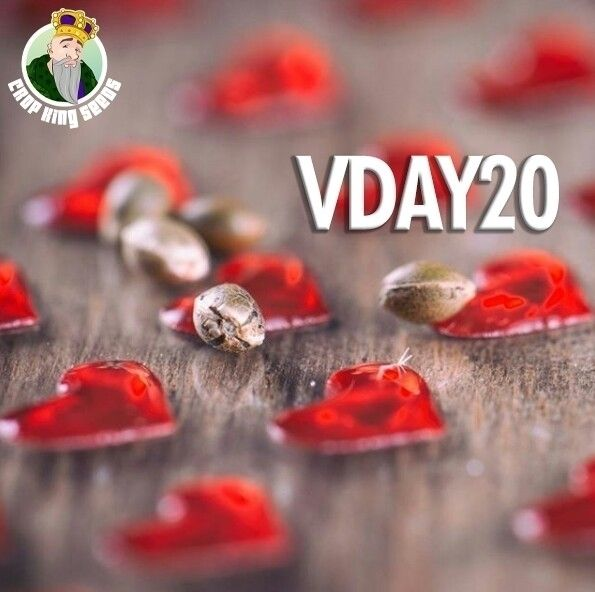 Happy Hearts Day. VDAY20 promo  - cropkingseeds | ello