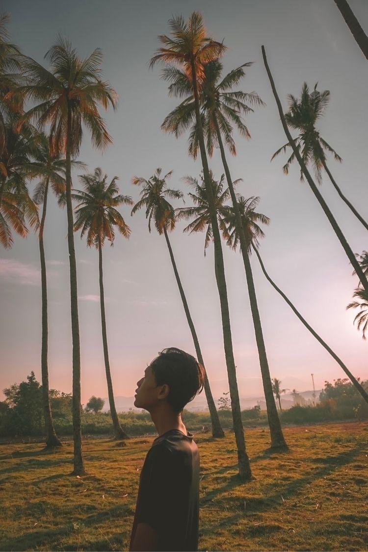 Magic Sunrise Lombok - lombok, ello - prajuritmimpi   ello