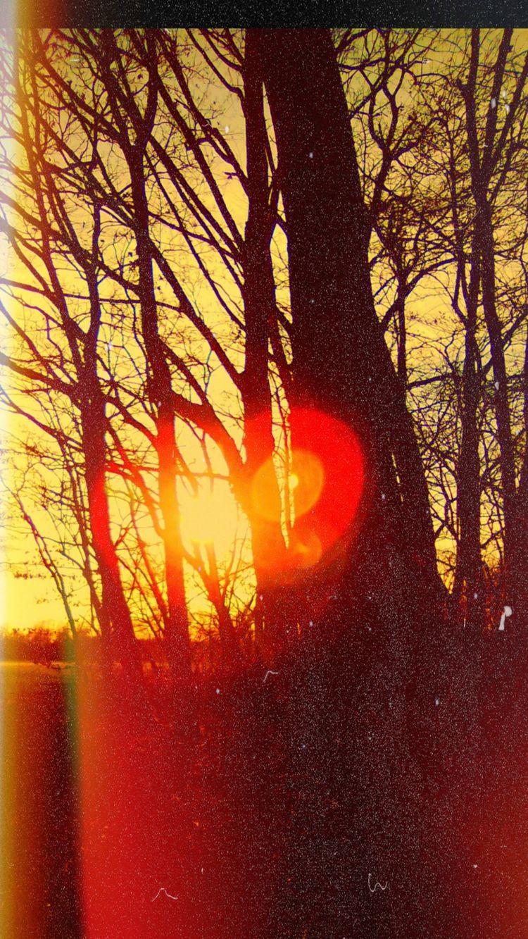 BLUES RED SUN SONS KYUSS - BRAN - novaexpress93 | ello