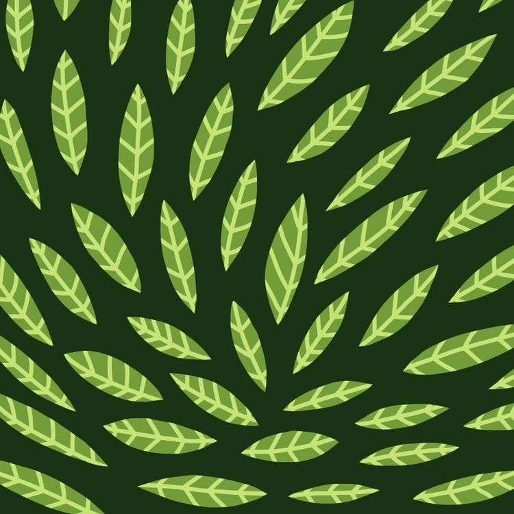 Leaf pattern - jonaswelin | ello