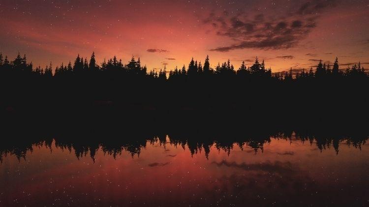 Sun Light - sun, sunset, ellophotography - felipehelfstein | ello