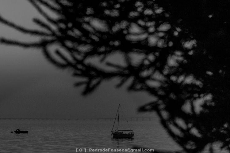 Lusco-Fusco - photography, fotografia - pedrodefonseca | ello
