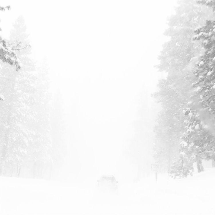 Sierra Nevada snowstorm Februar - dougskullz | ello