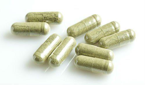 Passing Drug Tests Vacation hol - anthony44 | ello