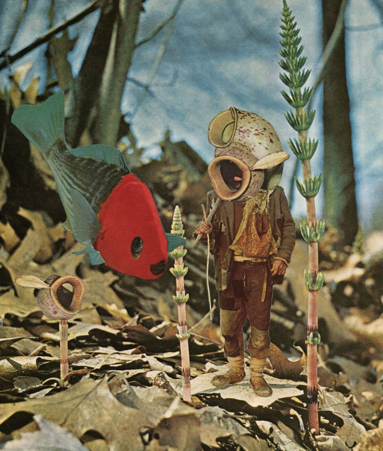 Collage Bep Broos - contemporarycollage#collageart#illustration#art#collage#collageartist#cutandpaste#analogcollage#analogcollageart#papercollage#surrealism#fish#forrest#seabed#diver - bepbroos | ello