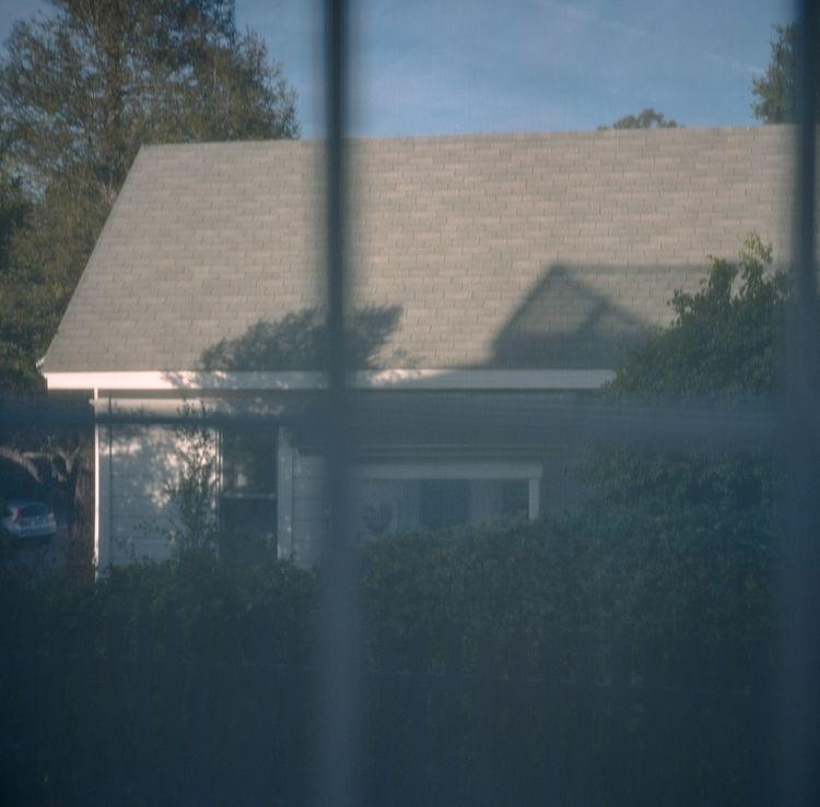 Glasshouses filmphotography - rolleiflex - ablackbirdsphoto | ello
