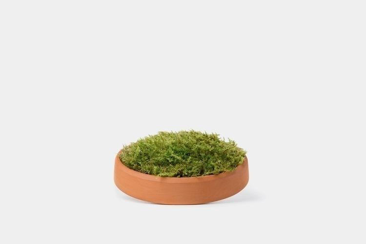 Green Dot Livingthings. Bring d - mure | ello
