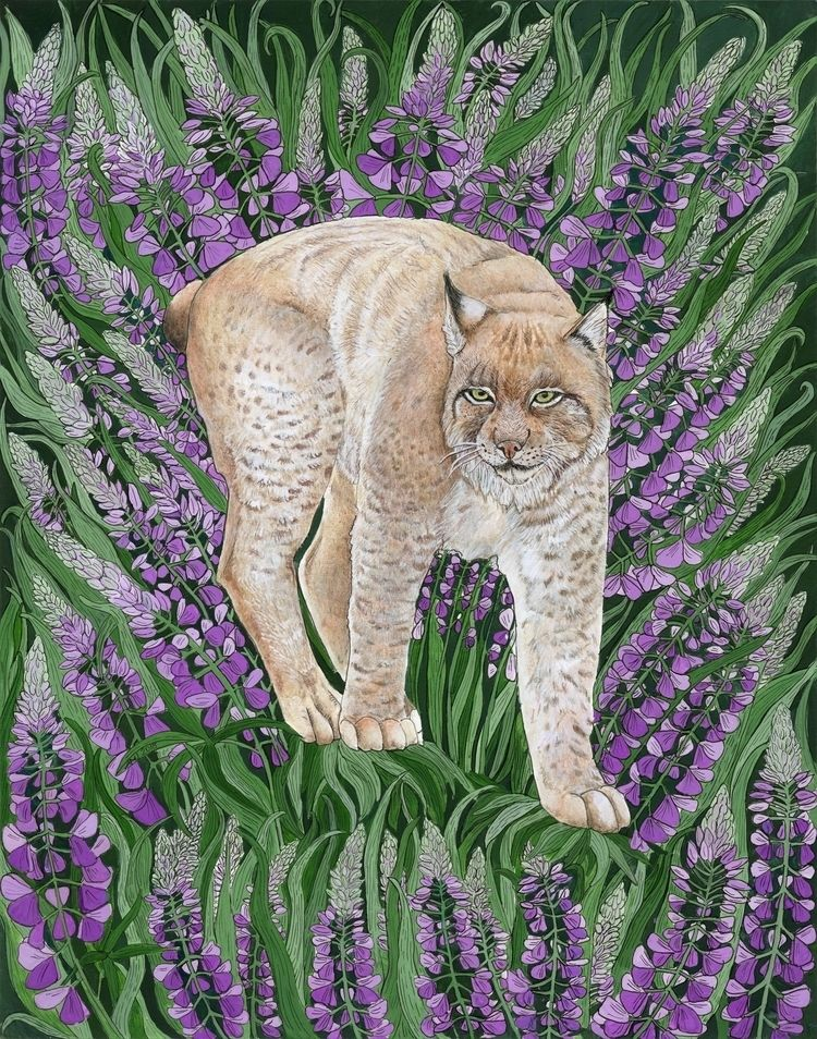 Flora Fauna Pacific Northwest S - jorgensona | ello