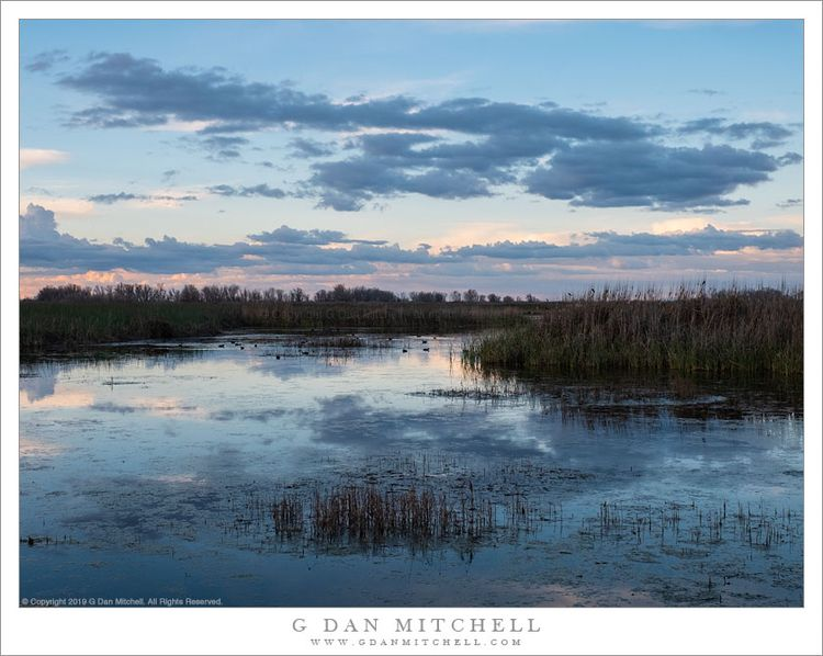 Evening Clouds, Winter Wetlands - gdanmitchell | ello