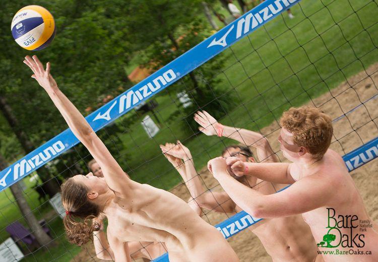 Lee Baxandall GRAND SLAM Volley - bareoaks | ello