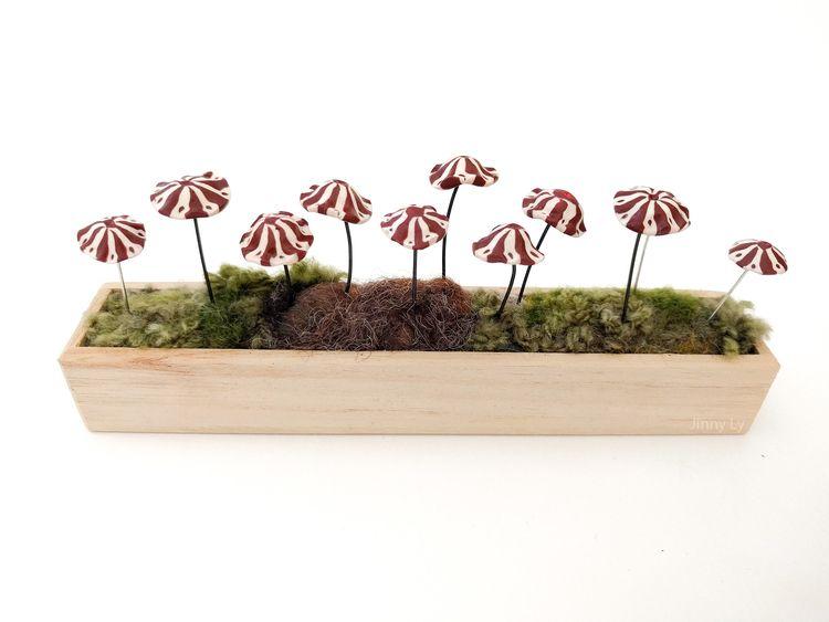 Marasmius tageticolor mushrooms - jinnyly   ello