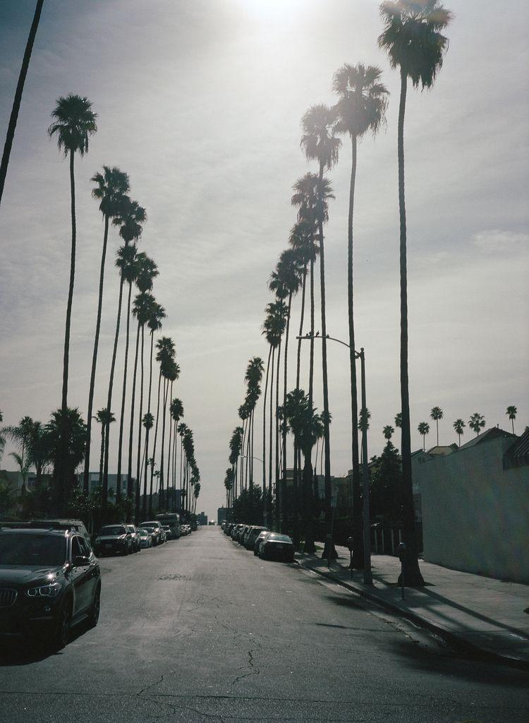 Los Angeles - maxwell_turner | ello