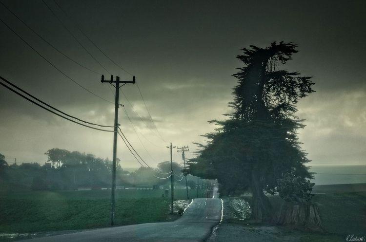 driving rain - robzucho,, landscape - abstractcolorism | ello