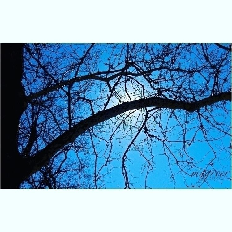 Late Winter, Early Spring - sun - melgreer | ello