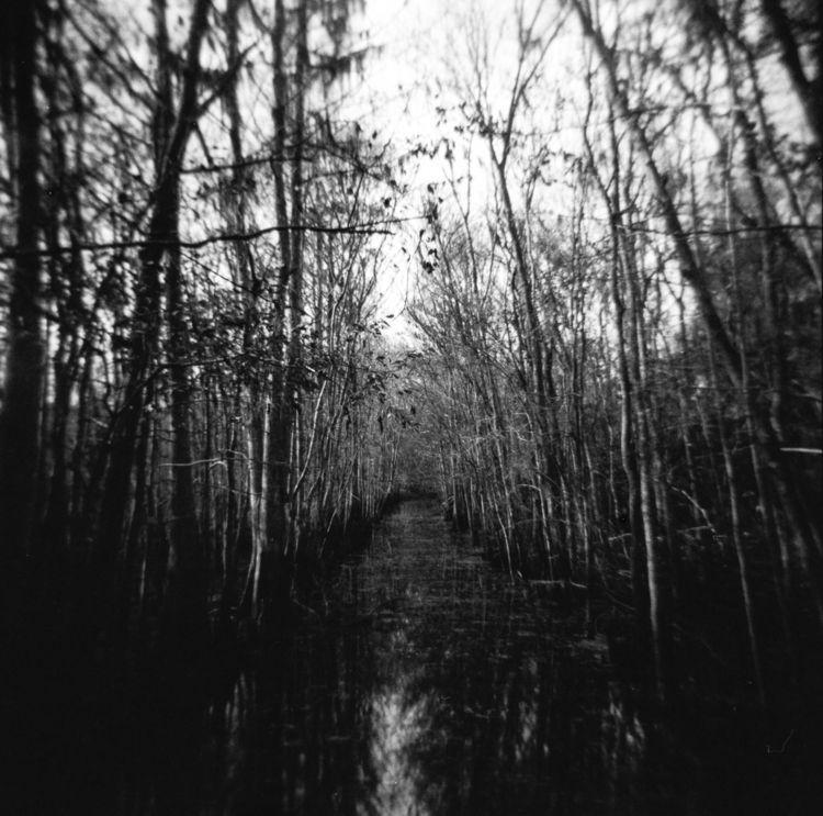 Swamp passage, Florida - filmphotography - mkettnerberer | ello
