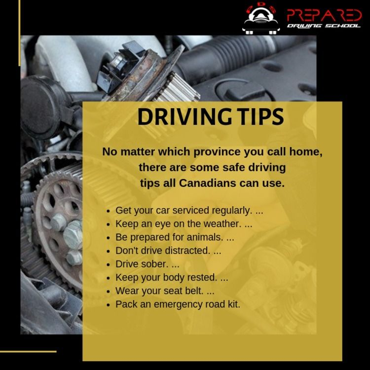 Read Driving Tips - sauszi | ello