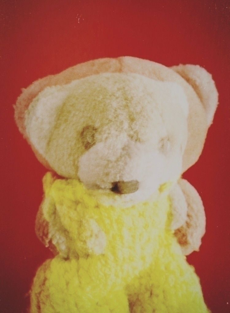 TeddyBear, Bear, Oso, OsoPeluche - lumagogu | ello