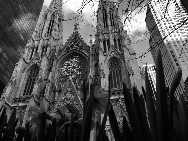 St.Patricks Cathedral - 35_mm_ | ello