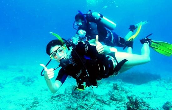 Life underwater experience dail - pacetourpackages | ello